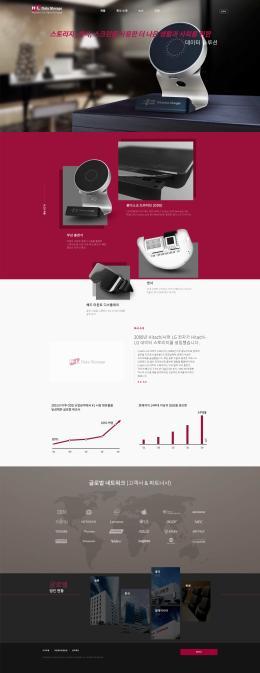 히타치-LG 데이터스토리지